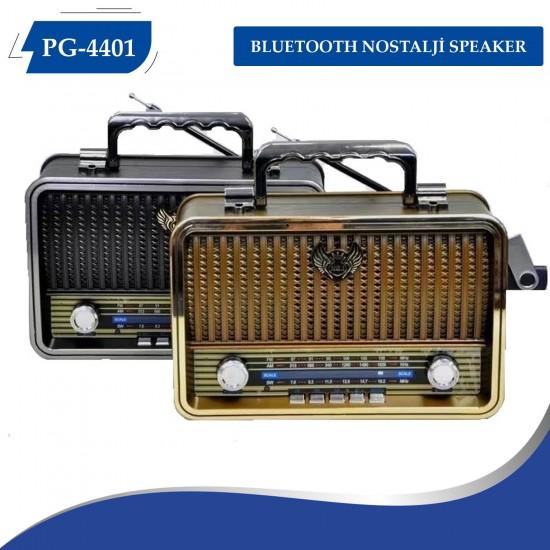 POLYGOLD PG-4401 USB TF CARD AUX İN  FM RADIO