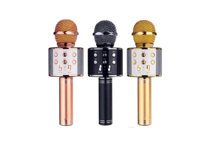 Polygold PG-116 Karaoke Mikrofon Karışık Renkli
