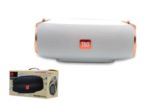 Pl-4352 Usb/Sd/Fm Bt Speaker
