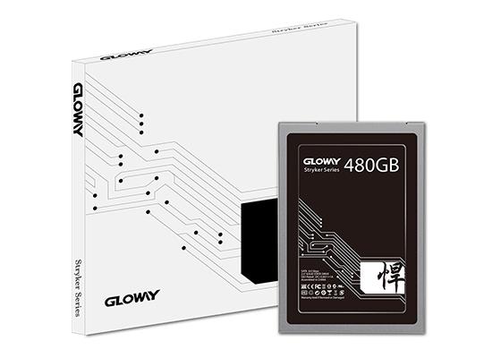 """Gloway STK 480GB 2.5"""" SATA 6Gb/s MLC SSD (Solid State Disk)"""